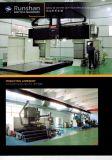 De geautomatiseerde Dubbele Machine van het Afbijtmiddel van Rib&Auto van de Overdracht van de Jacquard