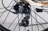 Bicicleta eléctrica de Europa de la mujer modelo clásica del estilo con el sistema de mecanismo impulsor elegante de Veloup