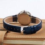 De in het groot Waterdichte Diamant van het Roestvrij staal Dame Fashion Watch