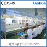 中国製普及した良質の光源の技術のデジタルデザインLED照明