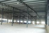 Gruppo di lavoro della struttura d'acciaio per la fabbrica farmaceutica