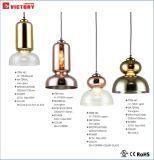 Illuminazione dell'interno moderna di nuovo disegno che appende lampada Pendant