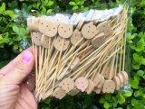 Eco espeto de frutas de bambu natural/Stick/Pick (BC-BS1066)