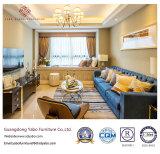 Muebles modernos del hotel para los muebles de la sala de estar fijados (YB-WS-73)