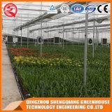China-multi Überspannungs-Gemüseblumen-Stahlrahmen PC Blatt-grünes Haus