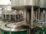 Auto het Vullen het Vullen van het Sap van de Pulp van de Machine Hete Verkoop Gebottelde Machine
