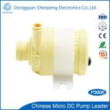 De stille Brushless 12V 24V Pomp van het Water van gelijkstroom voor Machine Baverage