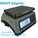 30000G 0.1G gramme Échelles numériques 30kgs Capacité double affichage LCD avec rétro-éclairage Manufactor Balance électronique