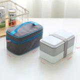 Sacchetto del pranzo del sacchetto e casella di pranzo più freddi isolati 10202A