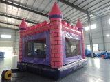 2017 castelli gonfiabili di rimbalzo di vendita calda/castello/parco di divertimenti di salto
