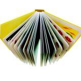 Libro cinese della scheda dei bambini di stampa del fornitore dei prodotti