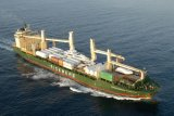 Ozean-Lieferung vom chinesischen Berufsschiffbauer