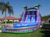 Profesional inflable inflable gigante loco de la piscina de la diapositiva de la diapositiva de agua
