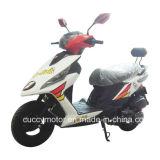 중국 성인 (OZ-125)를 위한 고품질 125cc 150cc Vento 성숙한 기동성 가스 스쿠터