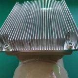 Assiette LNBF de C-Bande de Pll avec le filtre FTA de Wimax