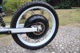 인기 상품 Pedelec 최고 Ebike 8000W 전기 자전거