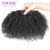 Clip bouclé crépu d'Afro brésilien dans des extensions de cheveu