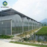 Acero galvanizado Venlo PC Kits de efecto invernadero de hortalizas