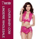 Sexy Lace Lingerie Nightwear Underwear (L32565-2)