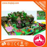 Matériel vilain de parc d'attractions de château de jouet d'intérieur de cour de jeu de gosses