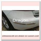 Protezione Bumper del testo fisso del Chrome Car Van Body Door che designa il kit della striscia