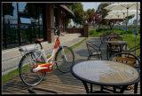 36V 250Wのセリウムの公認都市電気バイク