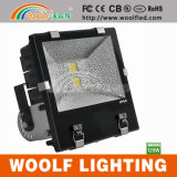Projector ao ar livre do diodo emissor de luz da ESPIGA IP65 de RoHS do CE de China Woolf