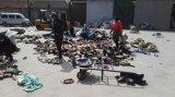 アフリカの市場(FCD-005)のための最もよいQualtiyの安く卸し売り使用されたスポーツの靴