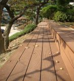 Colorer le plancher composé en plastique en bois témoins