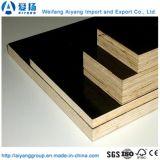 Тополь Core черной пленкой, с которыми сталкиваются фанеры для строительного материала