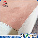 madera contrachapada del anuncio publicitario del álamo del grado de los muebles de 2m m - de 25m m Okoume/Bintangor/Birch/Pine