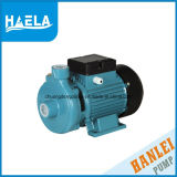 1.5 '' pequena bomba eléctrica de água limpa 1HP para irrigação agrícola