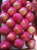 Yantai origen papel rojo dulce de manzana Fuji