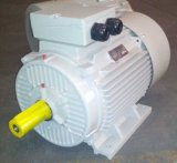 Moteur électrique Y2-132s2-2, ce de 5.5kw 7.5HP (TEFC IP55) de moulage d'Ie2 Y2 de bâti triphasé de fer
