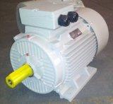 Электрический двигатель Y2-132s2-2 рамки чугуна Ie2 Y2 трехфазный, Ce 5.5kw 7.5HP (TEFC IP55)