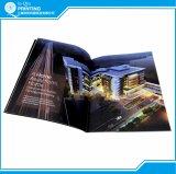 Stampa del catalogo della mobilia di colore completo della graffetta