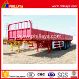 Wellen-seitliche Wand-LKW-Schlussteil des Ladung-Transport-2