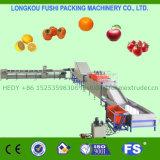最も新しいマンゴの洗浄の乾燥機械