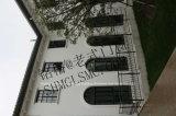 Stile francese Windows dell'annata inossidabile del ferro saldato