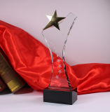 Пожалования стекла трофея звезды кристалла 5