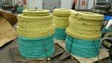 Bande laminée à chaud d'acier inoxydable d'AISI ASTM (304/316/410/409)