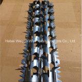 201, en acier inoxydable 304 maille de fil de fer barbelé antivol de Thorn