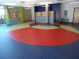 幼稚園のためのスポーツのビニールのフロアーリング