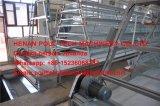 een systeem van de Kooi van de Kip van de Laag van de Batterij van het Frame Volledig voor het Landbouwbedrijf van het Vee