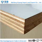 Eucalyptus/Poplar Core Wood Grain/Solid Color Plywood Melamine