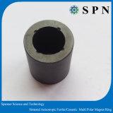 Anello multipolare del magnete del ferrito di rendimento elevato per il rotore del motore