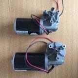 Grúa de CC de engranajes de baja velocidad del motor para puerta de garaje