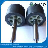 Imán anisotrópico sinterizado de Ferrtie para el motor eléctrico