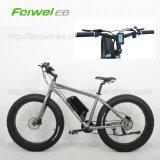 뚱뚱한 타이어 눈 바닷가 함 전기 자전거 (TDE10Z)