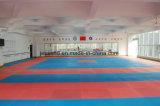 Stuoia di Tatami molle Colourful della gomma piuma di ginnastica di EVA